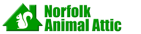 Norfolk Animal Attic